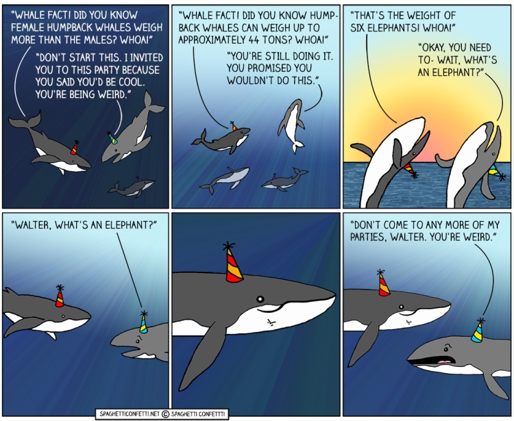 Whale Fact