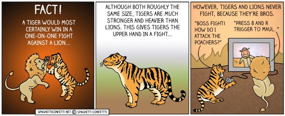 tiger vs lion