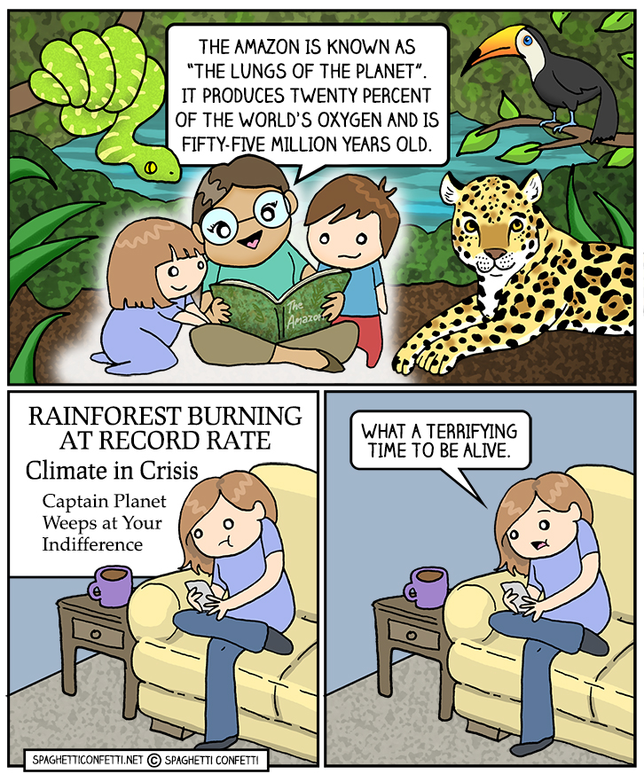 rainforest_110.jpg