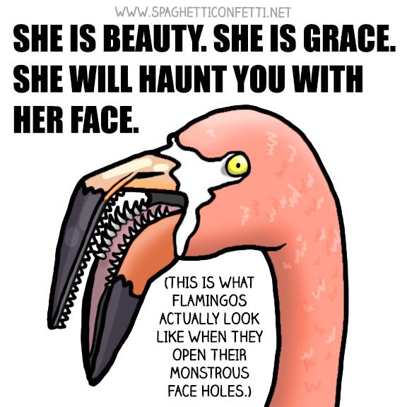 flamingo mouth